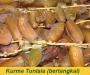 Kurma Tunisia
