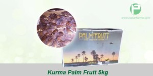 jual kurma palm fruit 5kg
