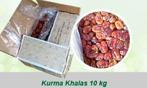 grosir kurma khalas curah 10 kg